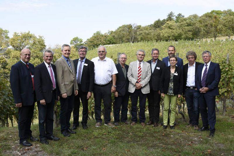 Die Mitglieder des Vorstandes steht inmitten der Weinberge. 12 Personen stehen auf dem Bild nebeneinander.