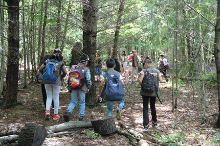Es sind meherer Schüler und Schülerinnen im Wald zu sehen