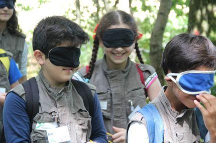 Die Kinder auf dem Bild haben die Augen verbunden. Sie erkunden mit allen anderen Sinnen, was es im Wald zu entdecken gibt.