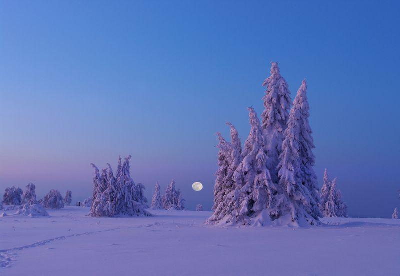Mondaufgang am Kahlen Asten