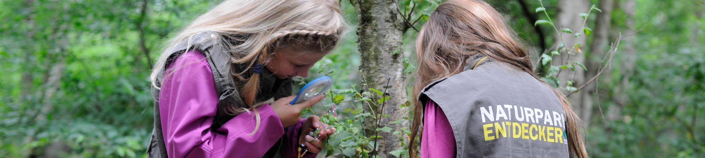Mädchen in Naturpark-Entdecker-Westen auf dem Löwenzahn-Pfad im Naturpark Bourtanger Moor - Bargerveen