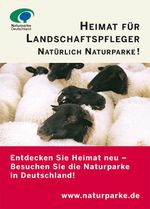 Anzeigenmotiv Heimat für Landschaftspfleger: Auf dem Bild ist eine Schafsherde zu sehen. Die Schafe sind weiß und haben einen schwarzen Kopf.
