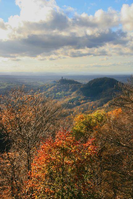 Wildnisgebiete im Naturpark Siebengebirge