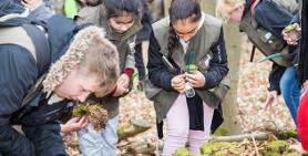 Naturentdecker auf Klassenfahrt: Kinder mit Naturpark-Entdecker-Weste und Becherlupen ausgestattet entdecken die Natur