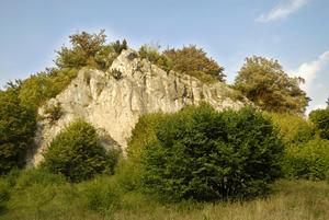 """Der """"Hohe Stein"""" hinter Grünland"""